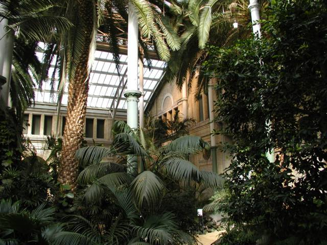 The winter Garden at Glyptoteket