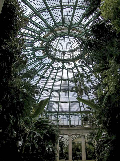 Tropical forest in the Royal Greenhouses